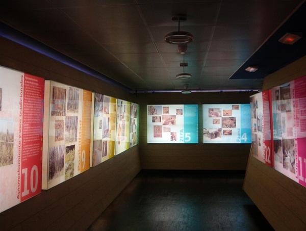 EMPRESA ESPECIALIZADA EN CONTENIDO AUDIOVISUAL PARA MUSEOS, 01